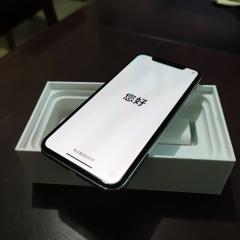 纯原装,整机原版原配没动过一颗螺丝,极品iPhone X高配256G