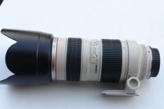 佳能 EF 70-200mm f/2.8L 小白 佳能70-200 2.8