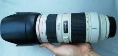 佳能70-200mm/2.8L 长焦镜头 小白