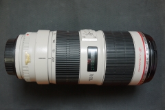佳能CANON EF 70-200 2.8 L IS 2 USM 爱死小白兔