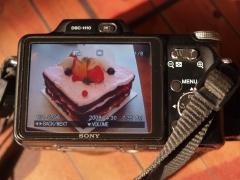 SONY 索尼 DSC-H10 小数码机身 10倍光学变焦 蔡司镜头 80包邮